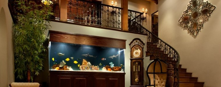 Fish Tank Maintenance Service