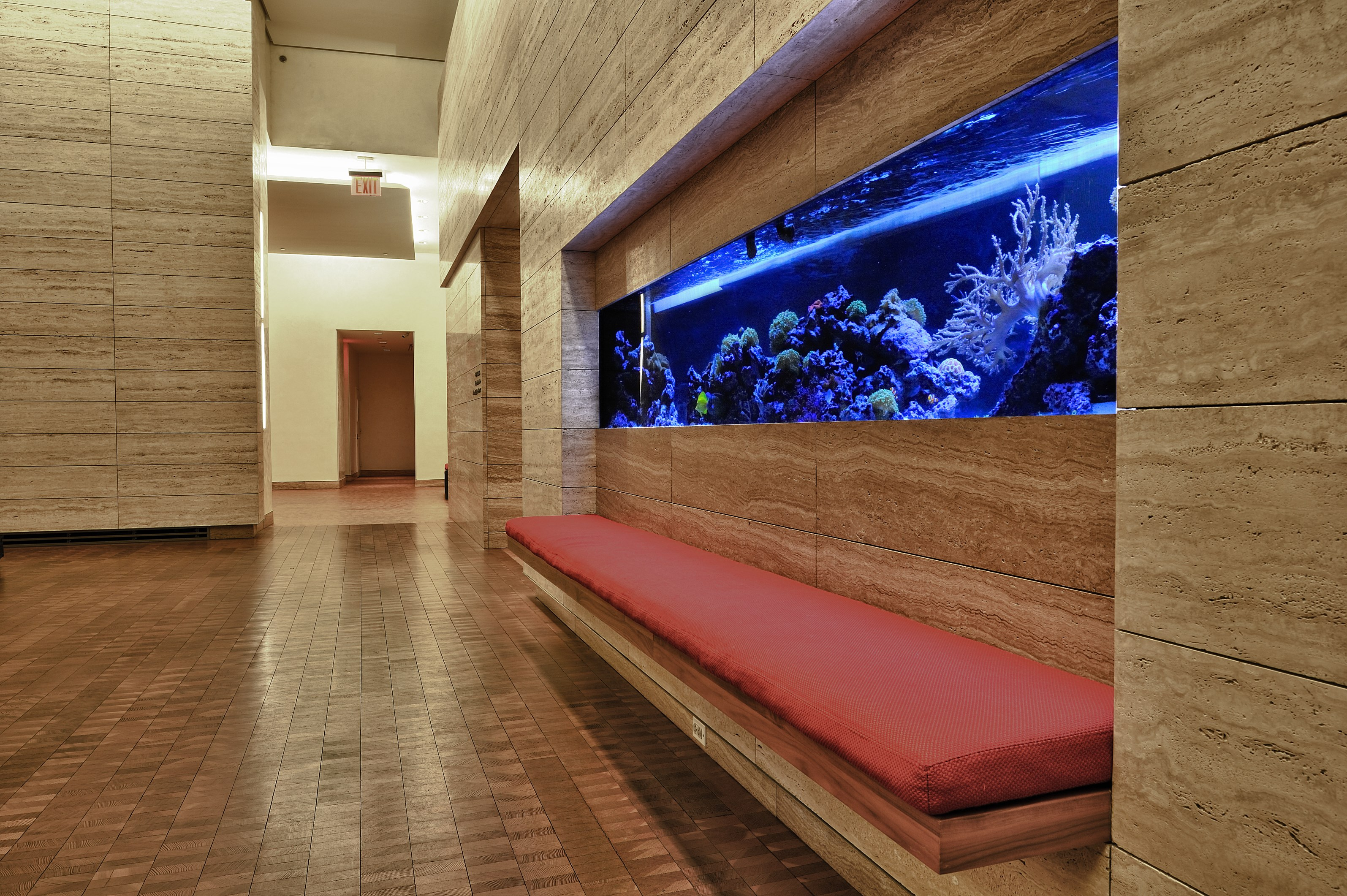 Fish tank cleaning service - Aquarium Service
