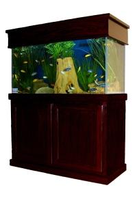 Lease Aquarium