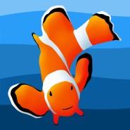 aquarium technician, aquarium specialist, aquarium service technician, aquarist job openings, aquarium technician jobs, aquarium maintenance technician, dallas aquarium experts, north texas aquarium, aquarium service