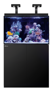Aquarium Design and Aquarium Installation from SaltwaterAquariumReefSupplies.com by Dallas Aquarium Experts