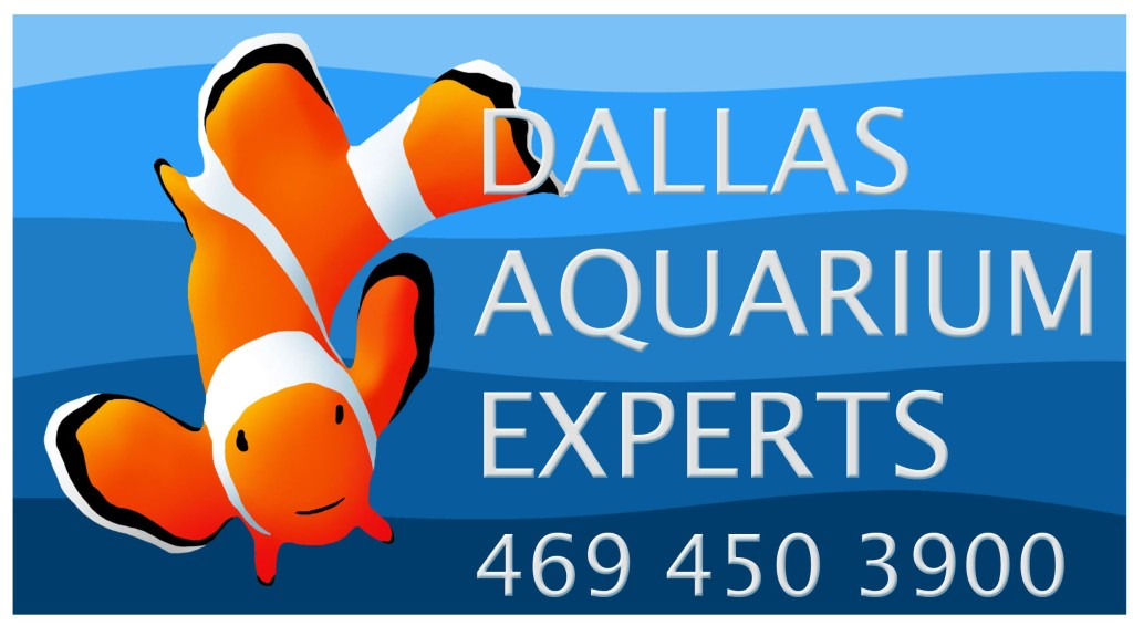 Dallas Aquarium Experts Logo with phone number