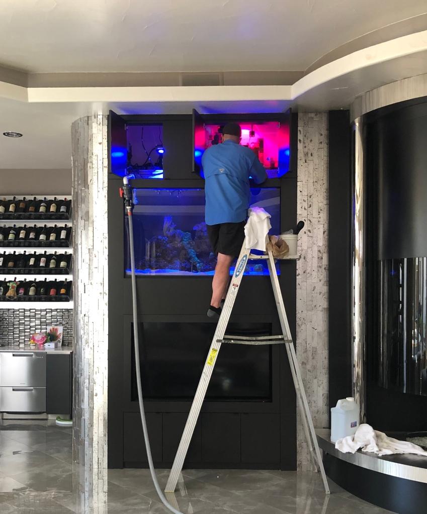 Dallas Aquarium Experts Aquarium Service Technician performing saltwater aquarium maintenance service