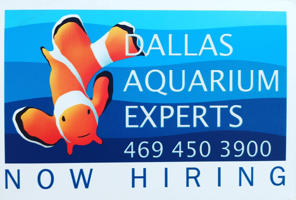 Dallas Aquarium Experts is Now Hiring Aquarist for our Aquarium Service Technician Position