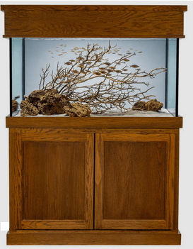 90 Gallon Aquarium with Classic Stand and Canopy stain selection Medium Oak